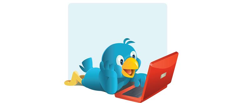 bio-en-twitter-que-atraiga-followers-enrique-cintado
